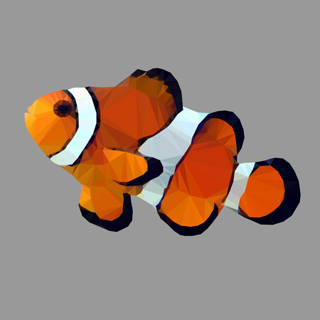 anemonefish: Clown Fish nemo catoon