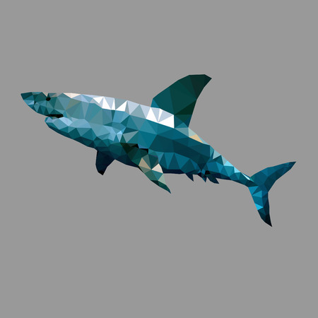 aggression: Polygonal geometric  shark