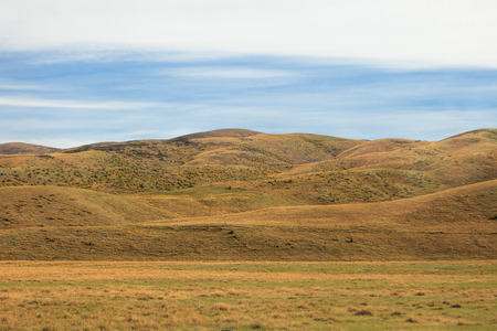 vineyard plain: Rural landscape of grassland hills in New Zealand