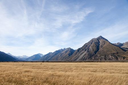 vast: Vast grass land near Mt. Cook national park