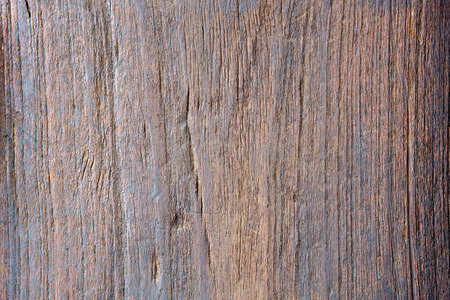 burl wood: Real wood background, old wooden door in countryside.