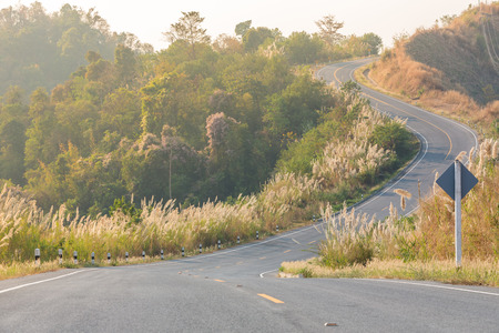 tortuous: Tortuous road on top of the mountain with beautiful wild flower along side, Nan province, Thailand