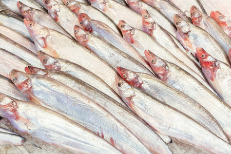 displayed: Sea fishs displayed in fresh market ready for sales. Stock Photo