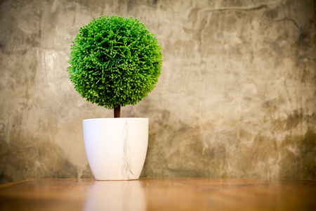 plant in pot: artificial small tree in a white flower pot with retro cement wall. Stock Photo