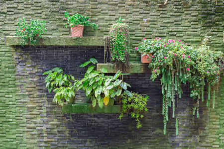 vertical: Pequeño jardín vertical con cascada en la pared de ladrillos de piedra.