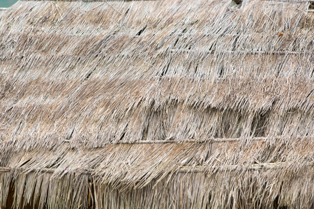 thatched: Background of old thatched roof in countryside.
