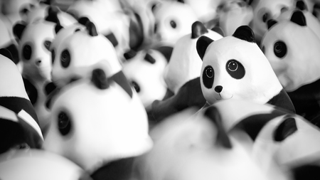 central park: Close up of Panda dolls made of paper display outdoor with selective focus.