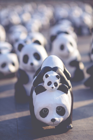 filtered: Close up of Panda dolls made of paper display outdoor with selective focus and tint filtered.