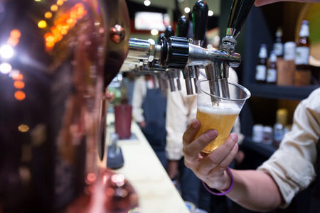 pouring beer: Bartender pouring beer in to a plastic glass with a counter bar background.