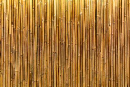 down lights: Background  texture of a golden bamboo wall or panel lit by interior down lights.