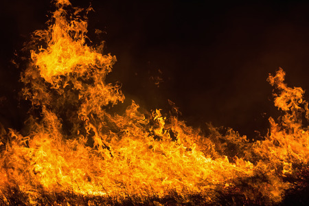 resplandor: Cierre de la llama del fuego sobre fondo negro.