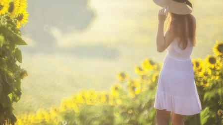 Long hair asian girl in white dress wearing big wicker hat walking alone down the sunflower field ( shot with soft focus lens)