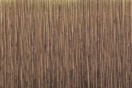 Background / texture of  bamboo wall or panel with color filter.