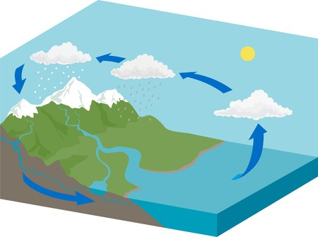 Water cycle  イラスト・ベクター素材