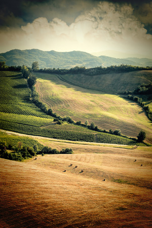 Vintage view of after harvest fields, Toscany, Italy photo