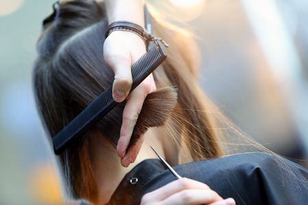 hairdresser scissors: Hairdresser trimming brown hair with scissors