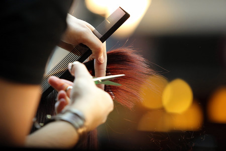 salon de belleza: Peluquería recortar el pelo castaño con tijeras Foto de archivo