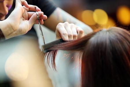 coiffeur: Coiffeur coupe les cheveux blonds avec des ciseaux Banque d'images