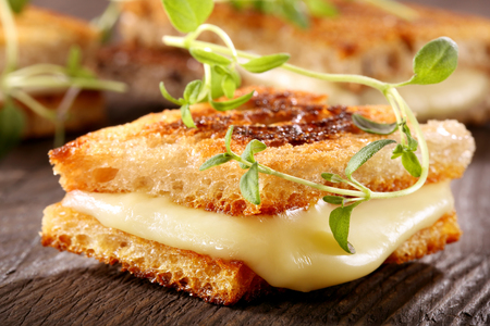 melting: Fresh toast with cheese and herbs