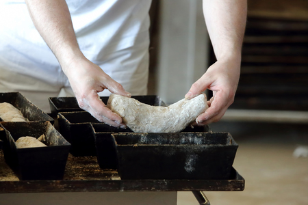 bread mold: The baker puts bread dough to mold Stock Photo