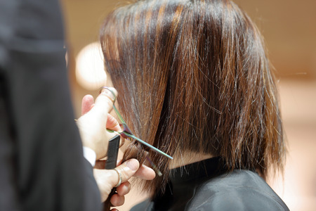 trimming: Hairdresser trimming brown hair with scissors