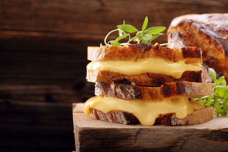 Fresh sandwich with cheese and herbs with empty space for text Banco de Imagens