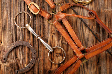 Set of horse equipment on wooden background