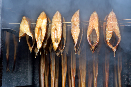 brown trout: Fresh smoked fish in smoker grill