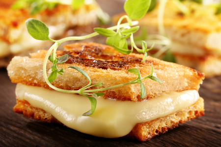 Whole grain toast sandwich with cheese and hrbs on wooden background and empty space for text