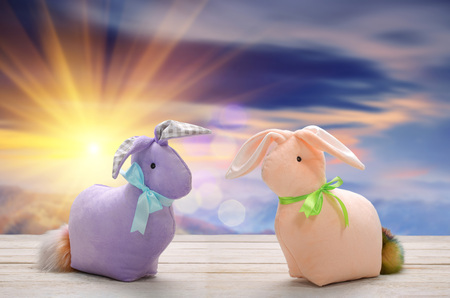 Two Easter bunnies and empty space for text. Easter holiday concept.