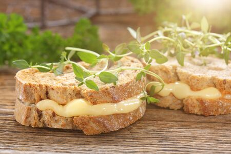 Fresh sandwich with cheese and herbs with empty space for text Stock Photo