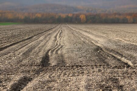 Plowed field prepared for sowing grain with empty space for text Standard-Bild