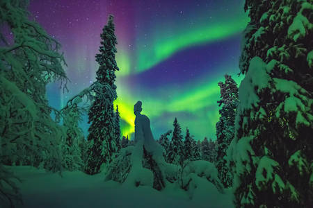 The Dream of Lapland Stok Fotoğraf - 80553677