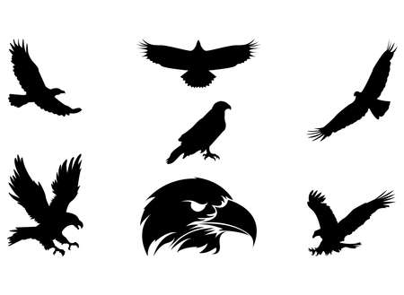 Collection of eagle silhouettes, vector illustrations, icons and logos Stock Illustratie