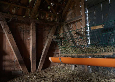 Inner part of a rustic old wooden sheepfold. Hay on the ground and in the feed through. Orange water through beneath. Spider webs everywhere. Wooden beam structure. Stock Photo