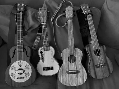 Itterbeck, Lower Saxony, Germany - June 2 2019 Four different Ukeleles. Leho, Burks, Ortega, Ammoon in black and white, A uke is a small guitar having four strings Editorial