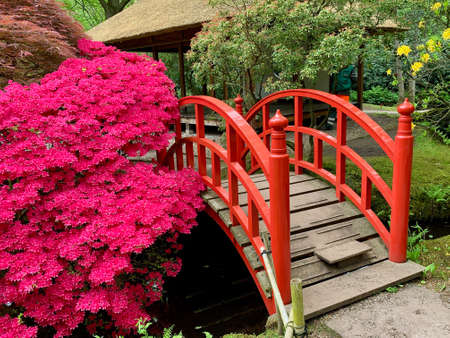 The Hague, the Netherlands - May 3 2019 One of the most famous Japanese gardens in the Netherlands is part of the Clingersael estate. It was placed on the list of national historical monuments in 2001