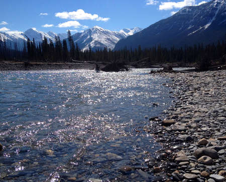 Kootenay River near Highway 93. Rocky Mountains, Canada. The sun reflects in the water. The magnificent snow capped Canadian Rockies in the background.