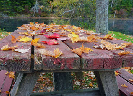 Autumn mood with maple leaves. Colorful leaves on an old wooden table. Famous red maple leaves in between. Picnic table. Location: Ontario, Canada.