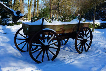 An old wagon in summer used as a large flower planter is now covered with snow. Wintertime. Trees in the background Standard-Bild