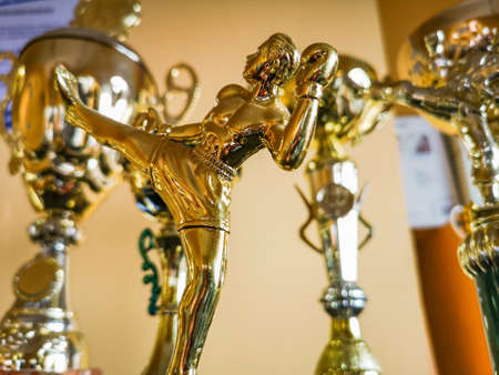 Golden statuettes, trophies and cups