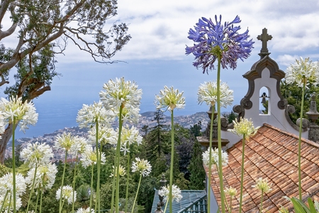 Quinta do Monte Panoramic Garden - Funchal - Madeira Stock Photo
