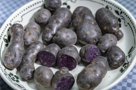 Truffle potato, Vitelotte, Blue-violet potatoes in a nostalgic bowl Stock Photo