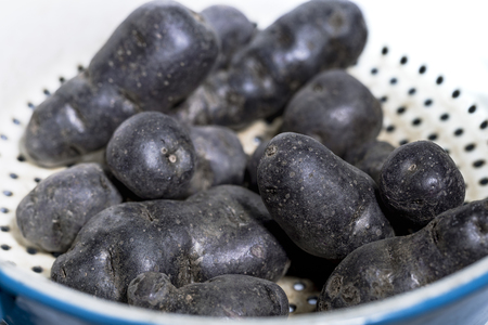 Truffle potato, Vitelotte, Blue-violet potatoes in a nostalgic sieve