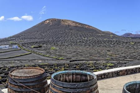 Lanzarote - Wine region La Geria with fire mountains 写真素材