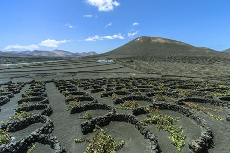 ランサローテ島 - 火山のあるワイン地域ラジェリア 写真素材