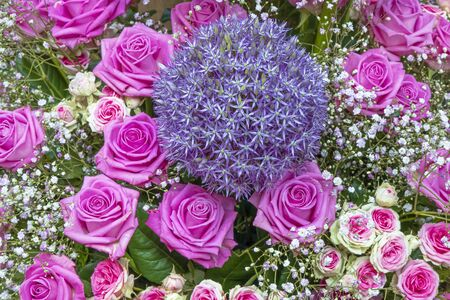 Bouquet of pink-colored roses with bluish ball tub and gypsophila Standard-Bild - 127443921