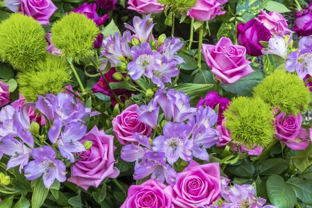 Bouquet of pink and purple roses Standard-Bild - 127444088