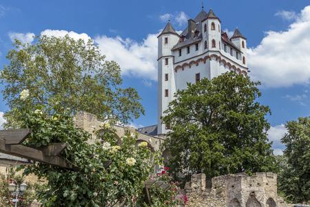Electoral Castle at Eltville on the Rhine Редакционное