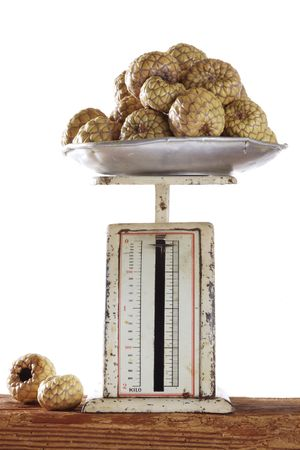 old scale with salak photo